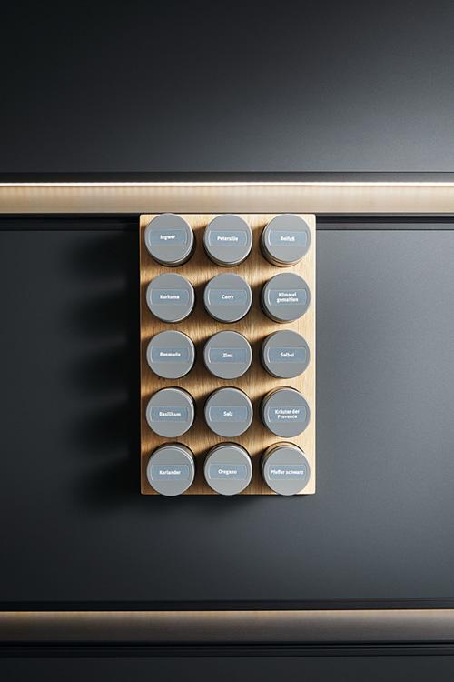 Panel-System mit Gewürzstreuer-Vorrichtung